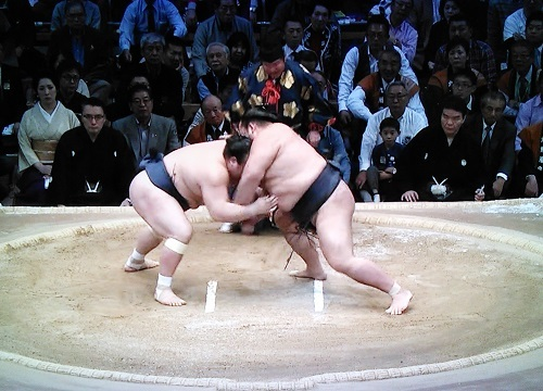 20161127 稀勢の里対宝富士 立ち合い