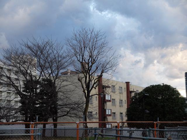 DSCF4616.jpg