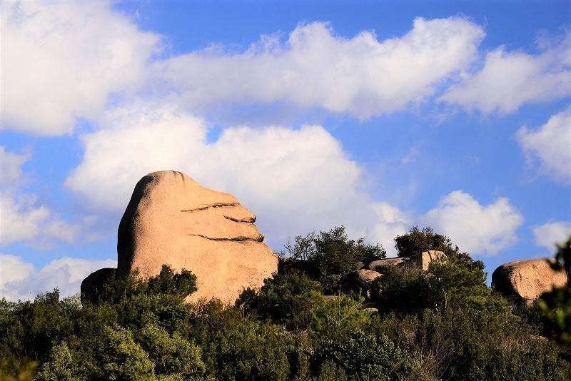 ニコニコ岩6