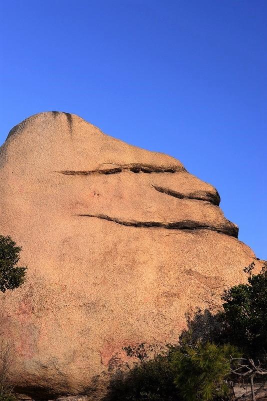 ニコニコ岩8t