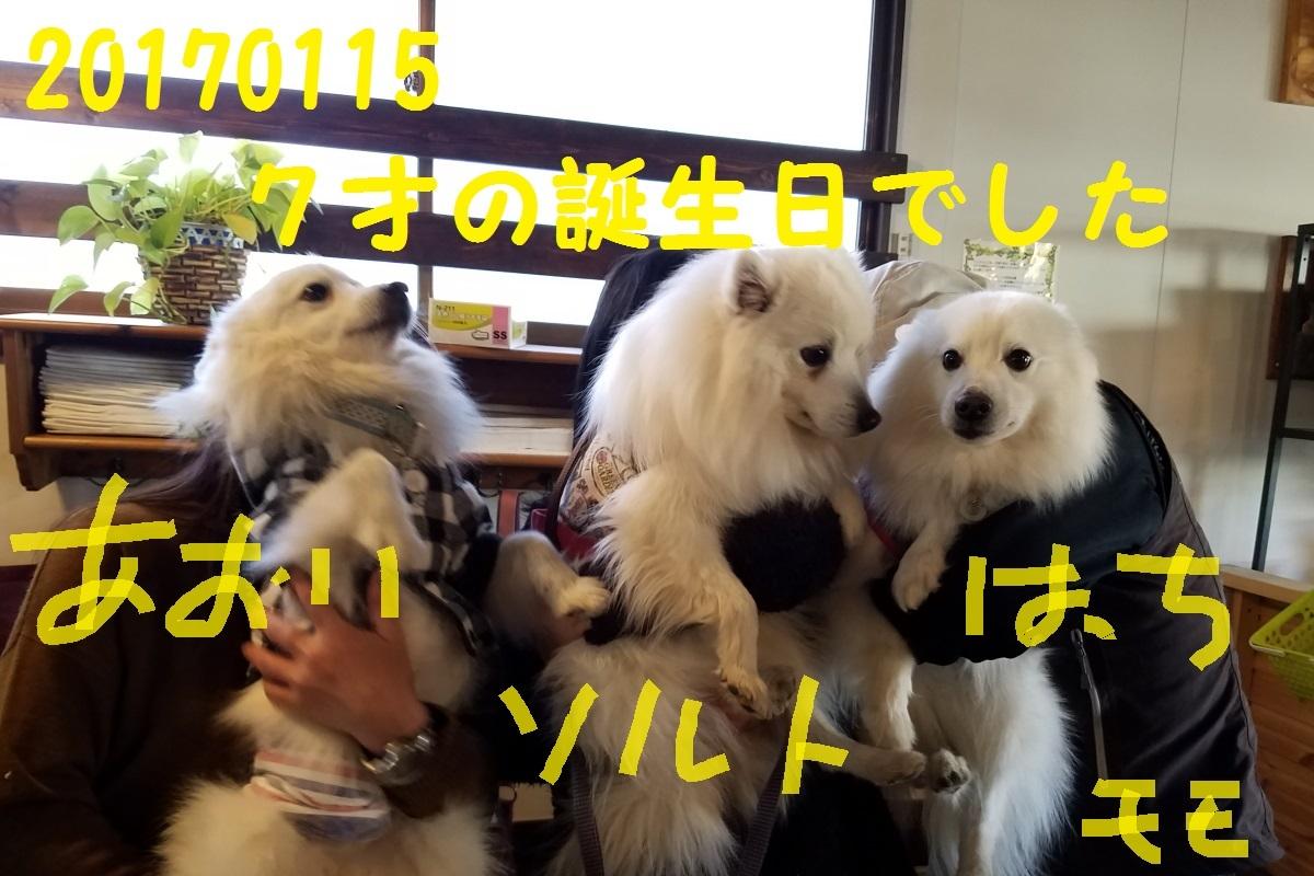 20170115_123449.jpg