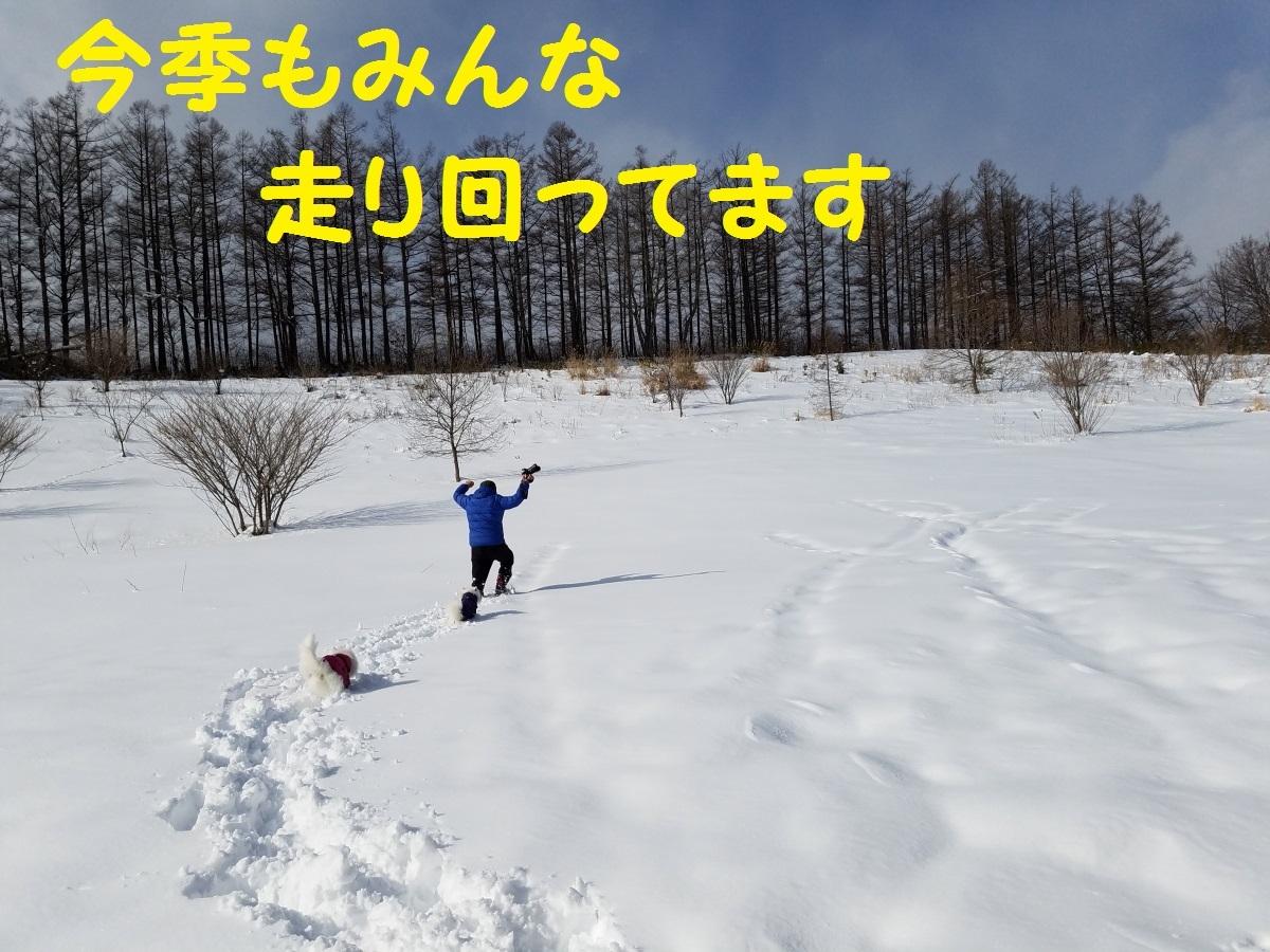 20170126_121322.jpg