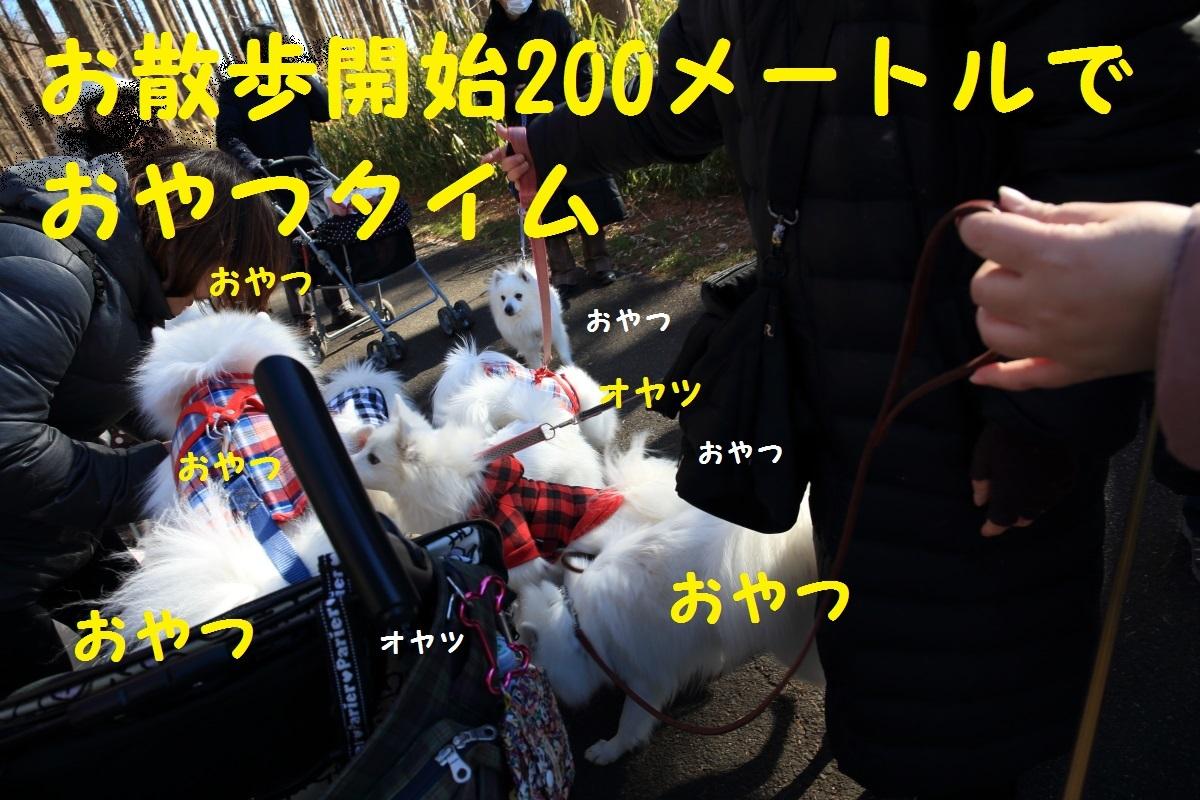 2K5A0833.jpg