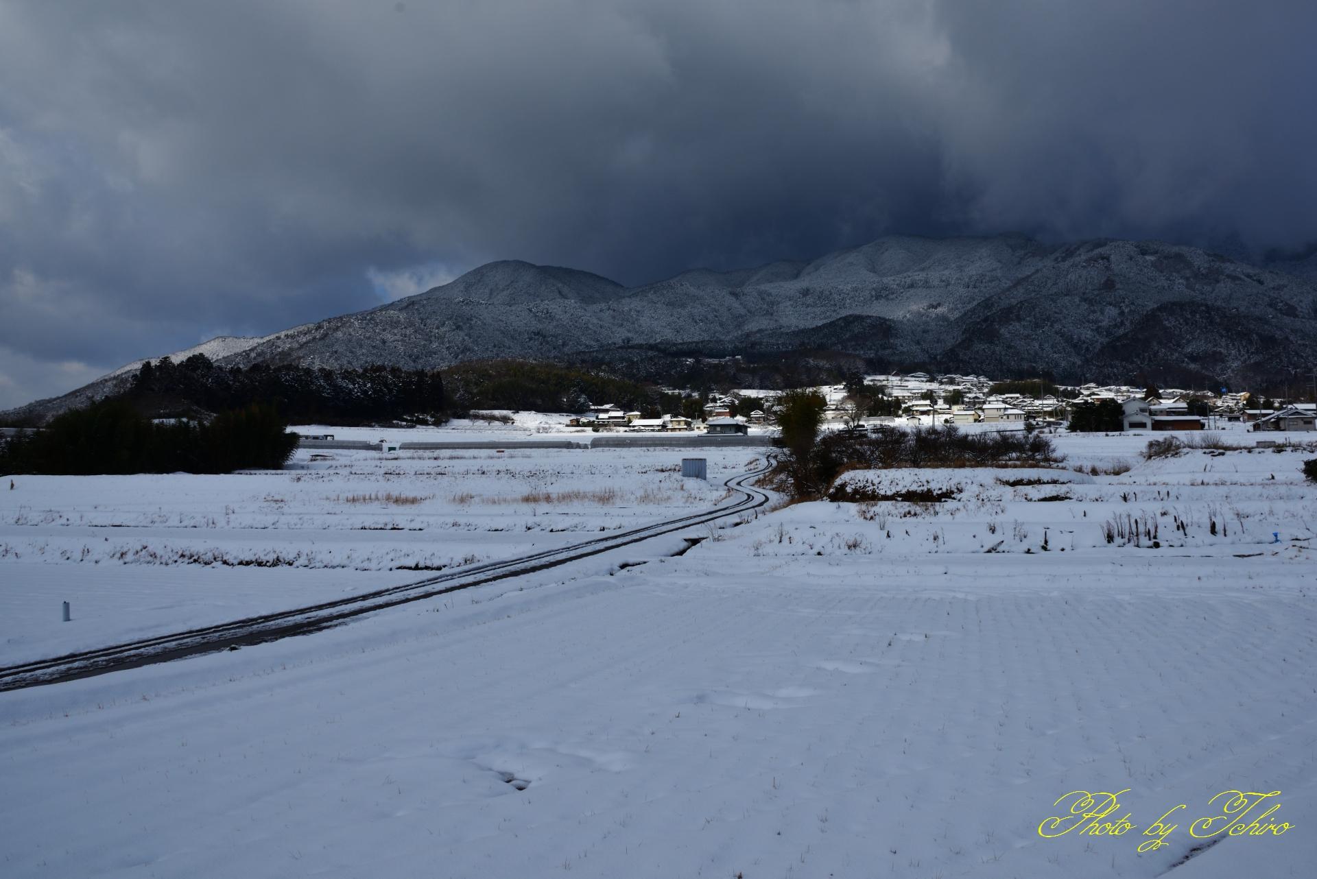 奈良県御所市西佐味雪景色