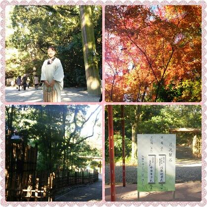 熱田神宮茶会