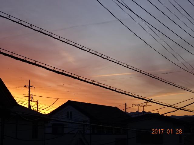 2017_01280133.jpg