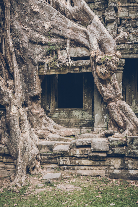 20170125_preah_khan_temple_93.jpg