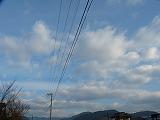P1250341.jpg