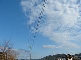 P1300519.jpg