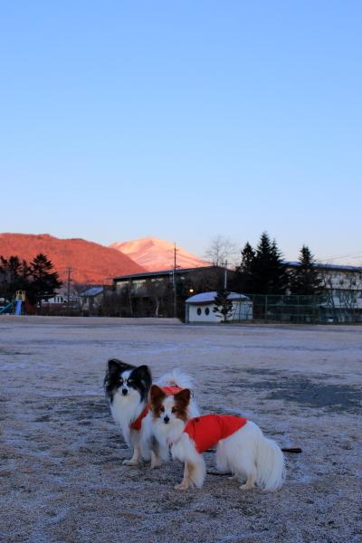 冬の軽井沢 2016