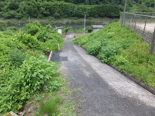 nobuki (2)