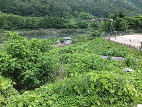 nobuki (1)