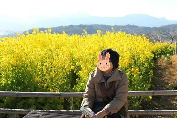 1/22 菜の花を背に   吾妻山公園