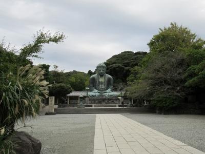 高徳院・大仏像