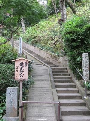 長谷寺・眺望散策路
