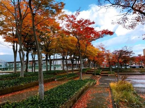 2016-11-09文化ホールの紅葉