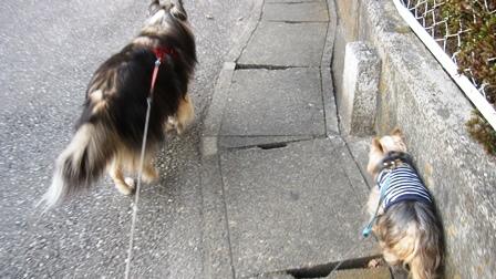坂道の端っこ歩き1