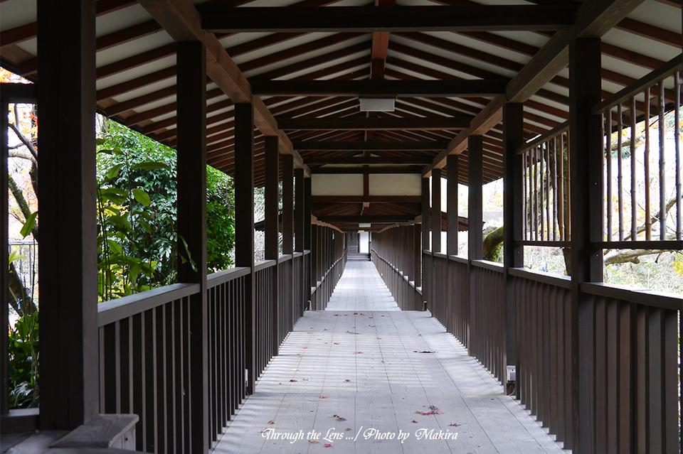 本土寺L8