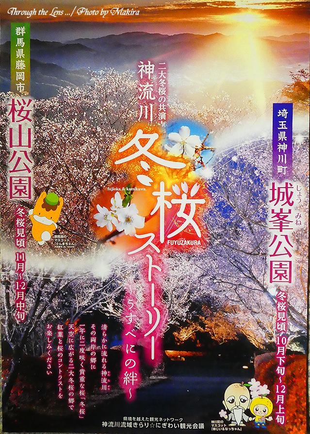 城峯公園・桜山公園パンフレットTZ1