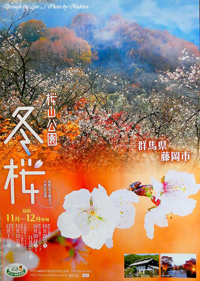 桜山公園パンプレットTZ1