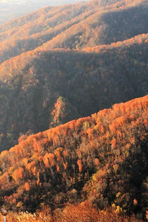 ドンデン線から見た紅葉