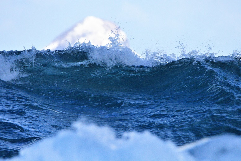 大野亀と波1