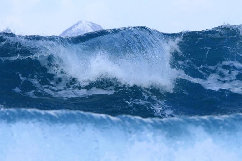 大野亀と波2