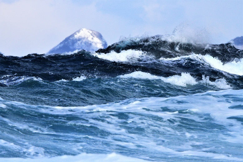 大野亀と波3