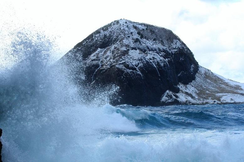 大野亀と波7