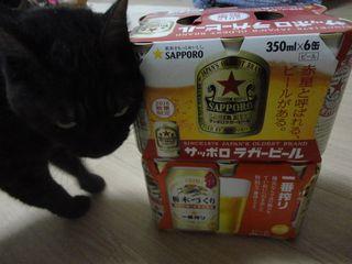 メグとビール