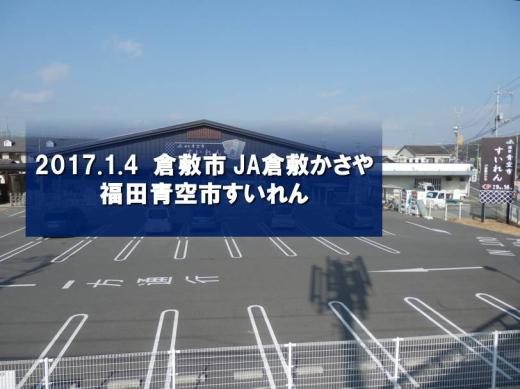 jakurashikikasayasuiren1701-3.jpg