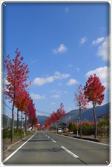 2016,11,13琵琶湖1