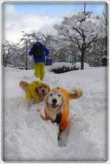 2017,2,13雪遊び1