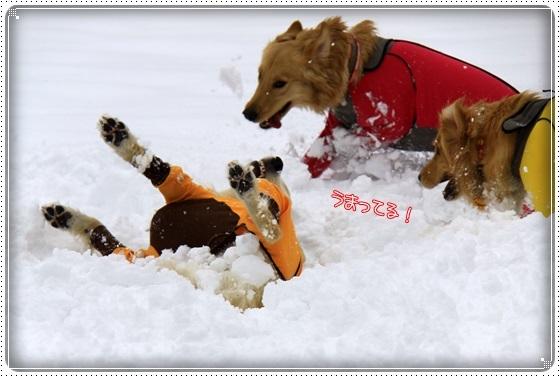 2017,2,13雪遊び15