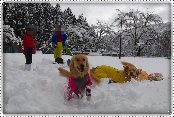 2017,2,13雪遊び20