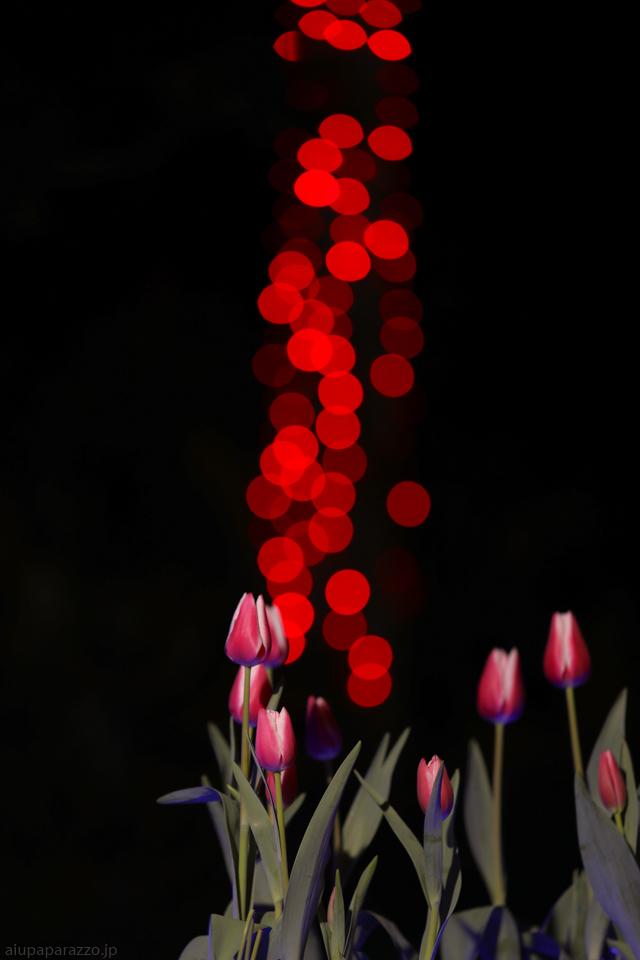 flowerPillumi2-2.jpg