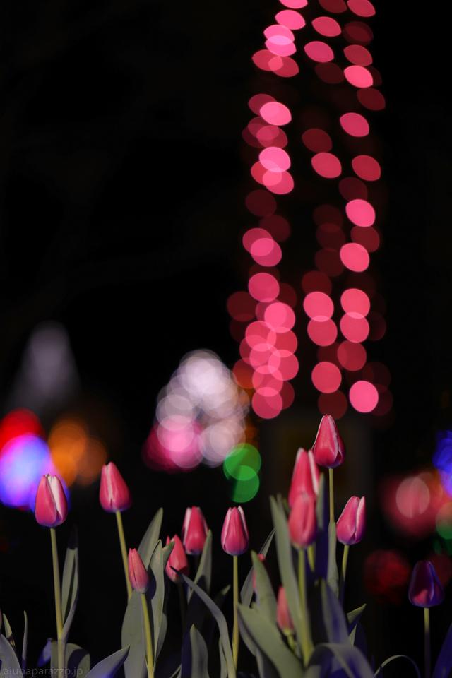 flowerPillumi2-4.jpg