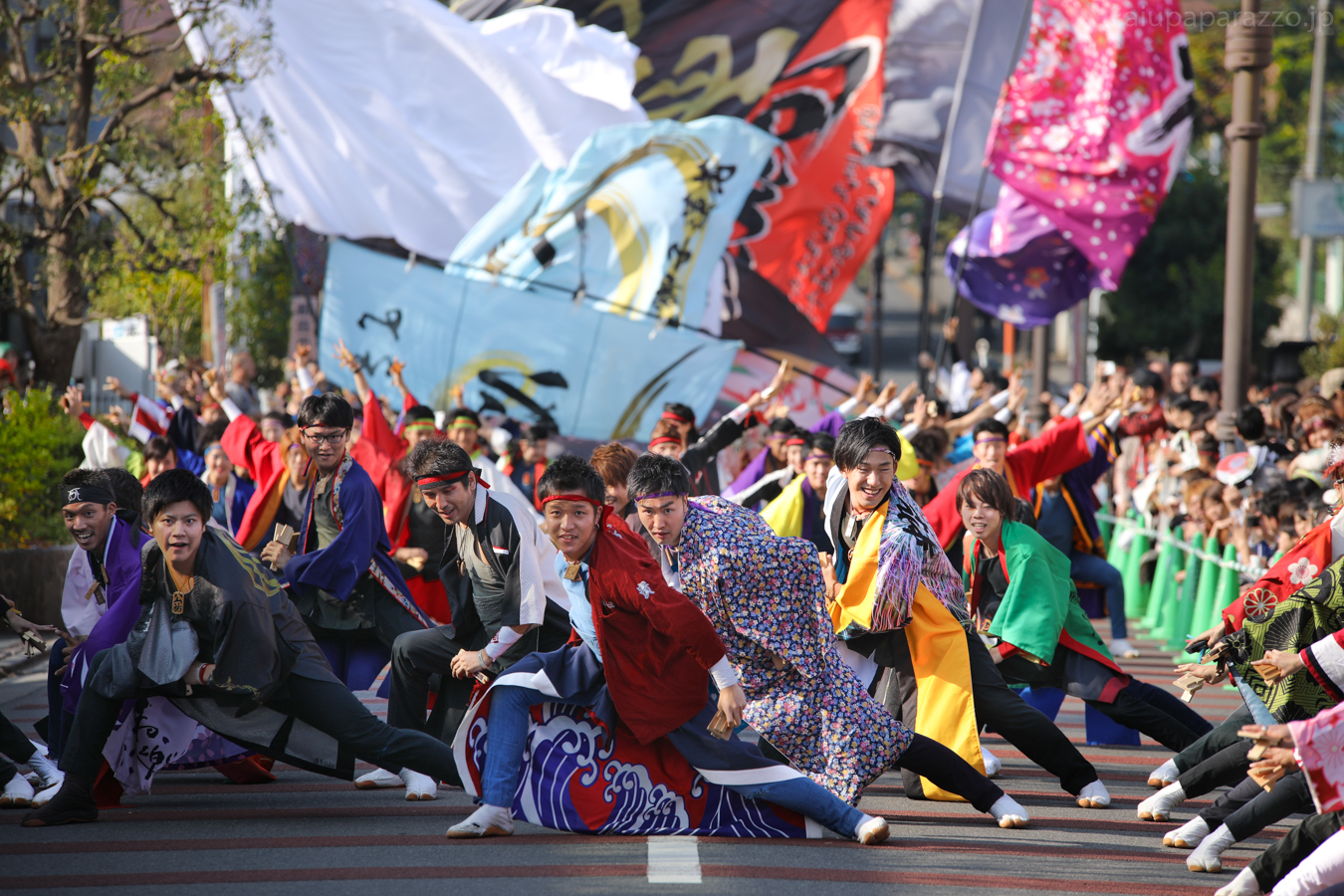 kanpachi2016oyachai-14.jpg