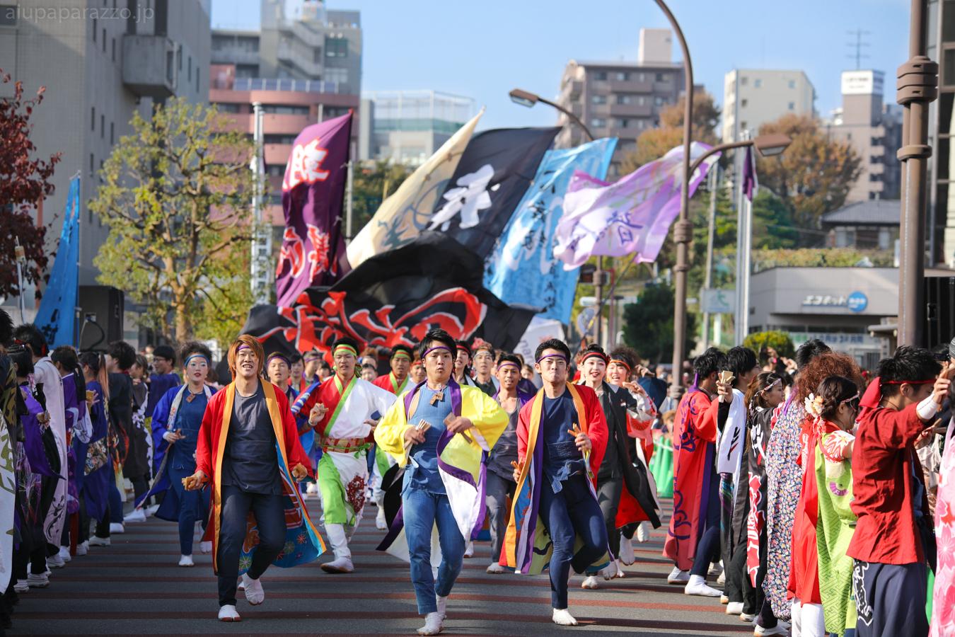 kanpachi2016oyachai-23.jpg