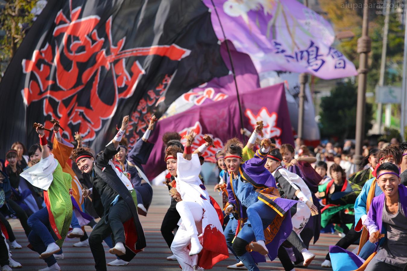 kanpachi2016oyachai-29.jpg