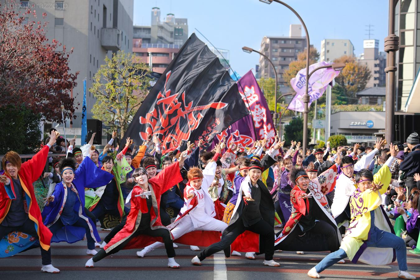 kanpachi2016oyachai-37.jpg