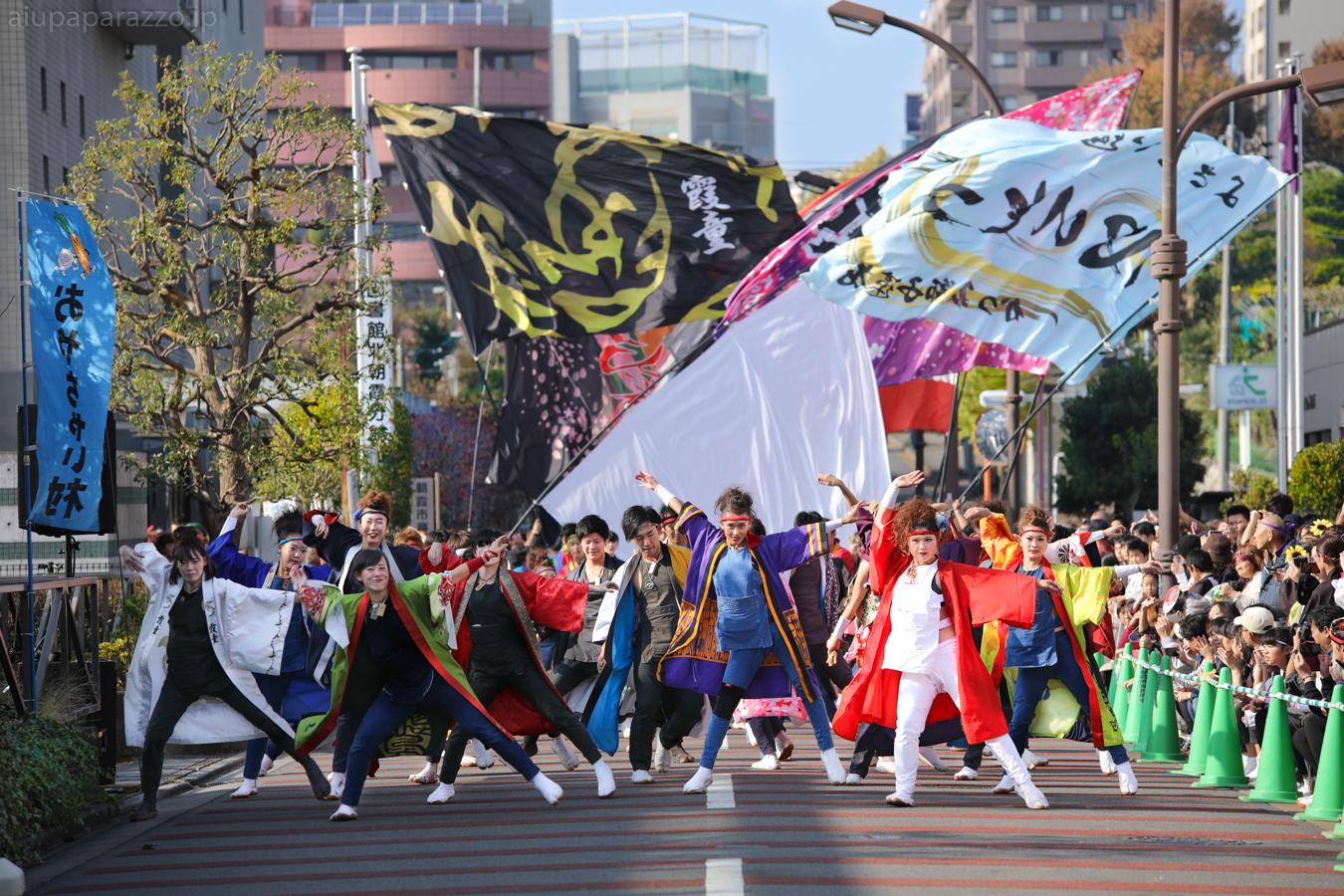 kanpachi2016oyachai-5.jpg