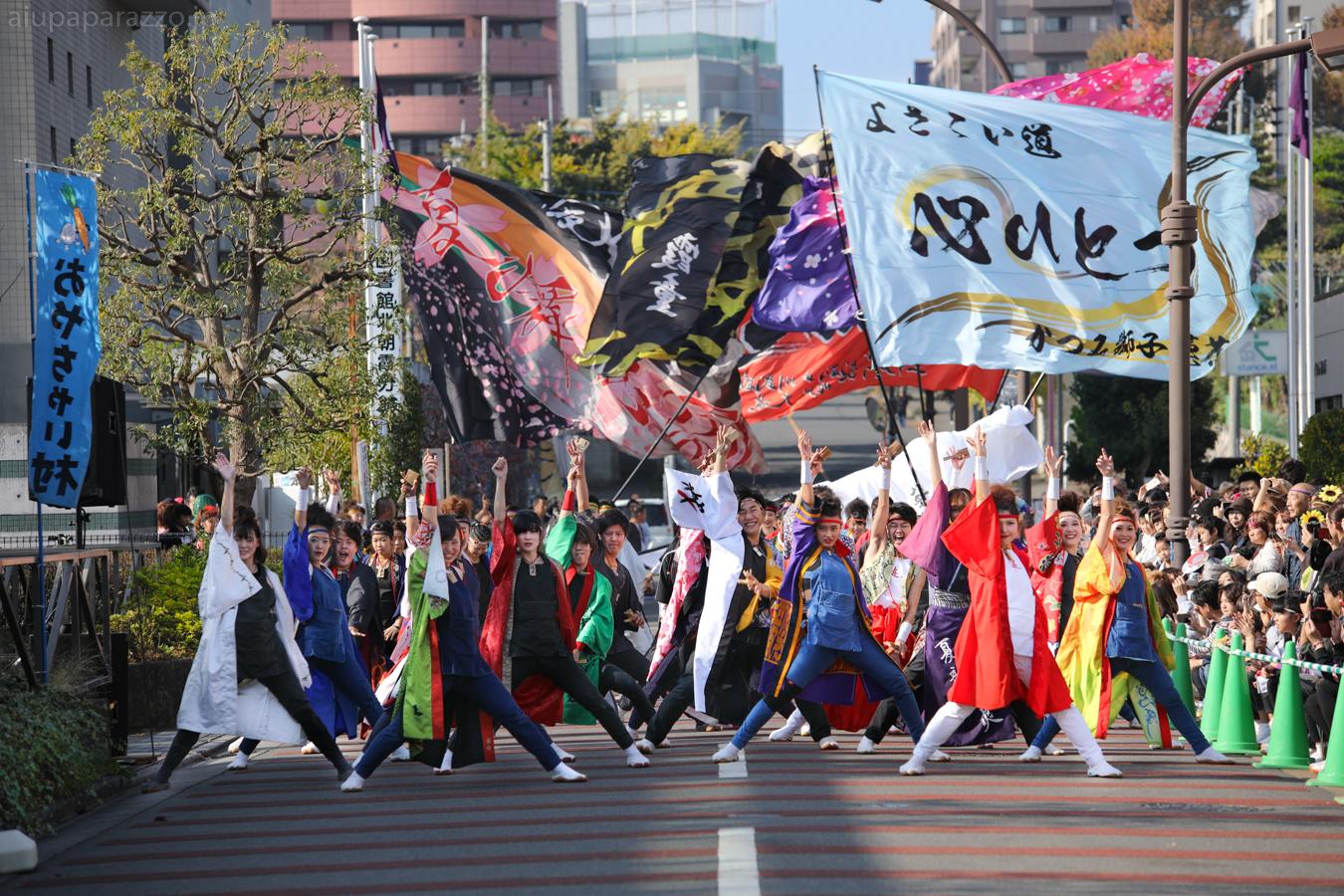 kanpachi2016oyachai-7.jpg