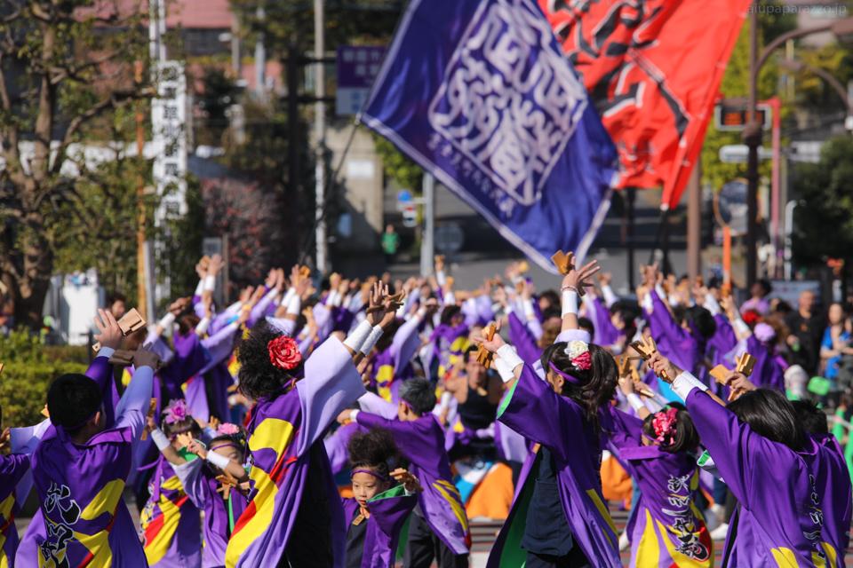 musashi2016oyaam-2.jpg