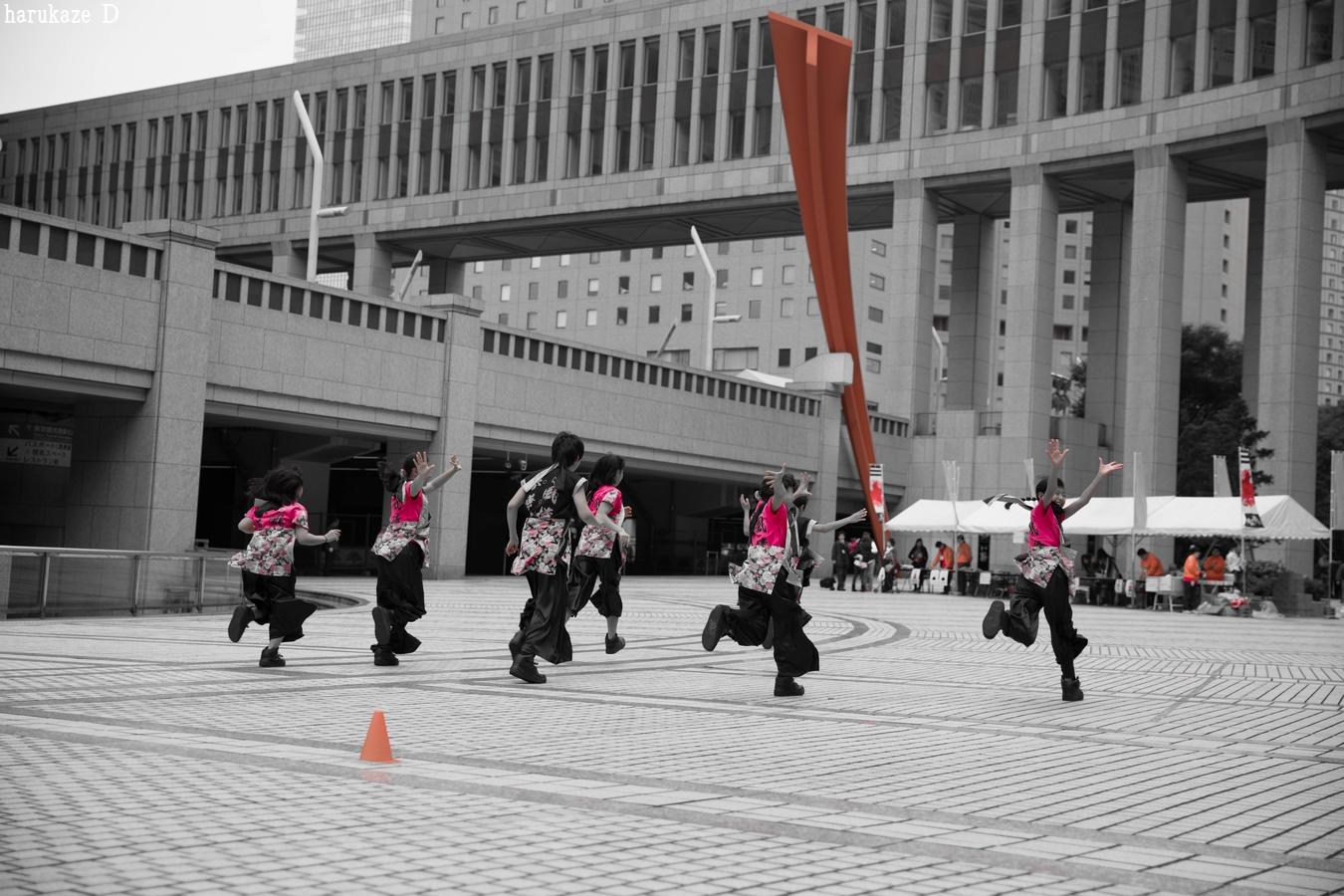 shun2016tomin_46.jpg