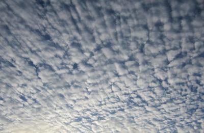 秋の空 うろこ雲