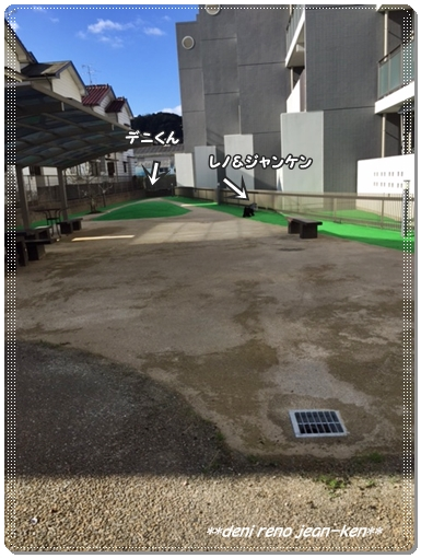 20161231_1a.jpg