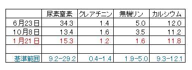 reno_kensa_0122a.jpg