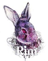 usa-rim-logo.png