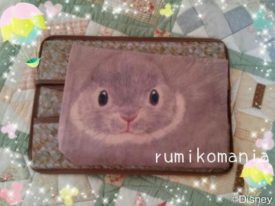 rumimani76_convert_20161203115748.jpg